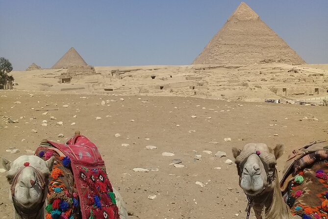 Giza Pyramids and Sphinx with Camel Ride Private Half Day Tour