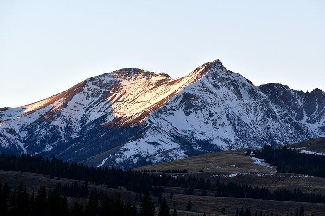 Roam Yellowstone Winter Megafauna Tour and Hot Springs Soak