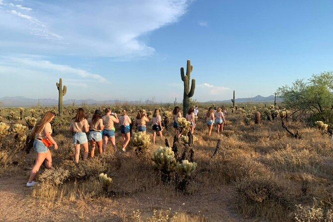 Sears-Kay Ancient Ruins Hike & Sonoran Desert Jeep Tour