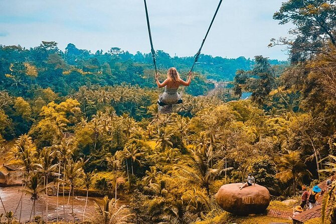 Ubud Tour: Monkey Forest, Rice Terrace & Jungle Swing - Free Wifi