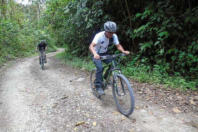 Nono to Mindo Biking - 1 Day - Private Tour