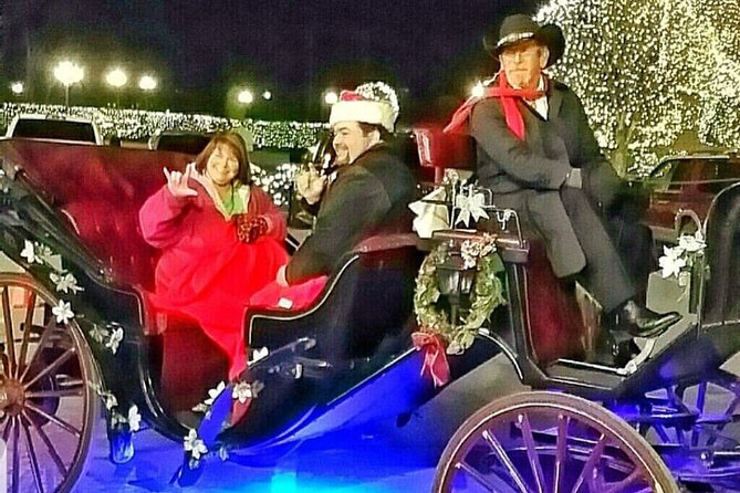 Holiday Christmas Lights Rides 20 Minute Narrated Ride