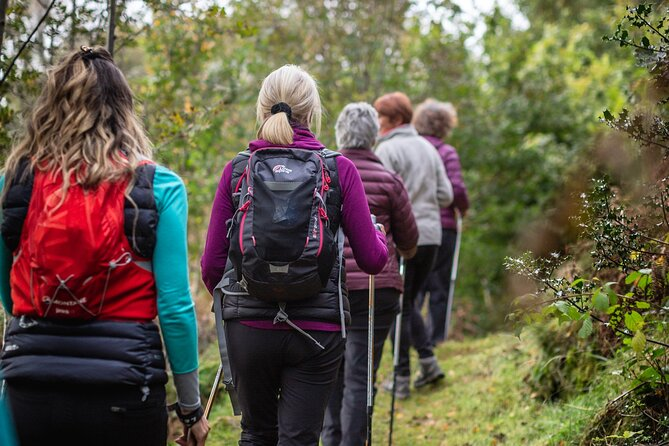 Half-Day Wales Snowdonia Nordic Walking Small-Group Experience