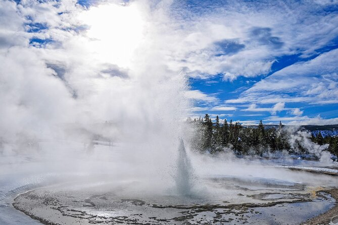 4-Day Yellowstone and Grand Teton Park Winter Tour for Small Private Group