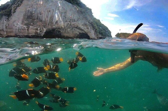 Snorkel in Los Arcos