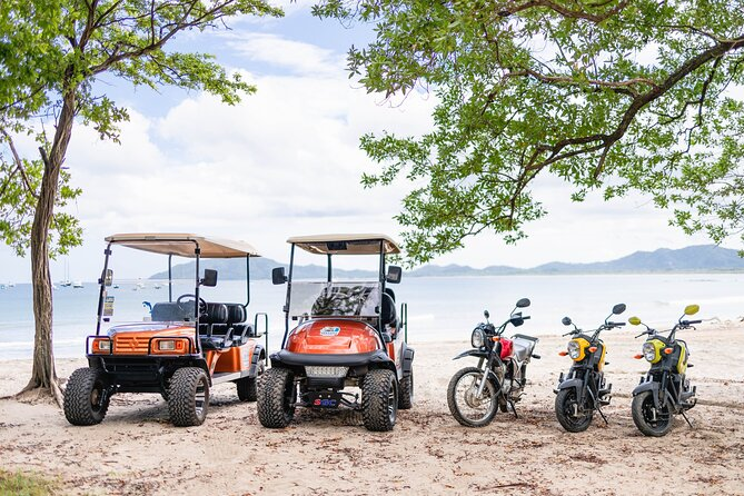 1-Day 4-Seater Golf Cart Rental