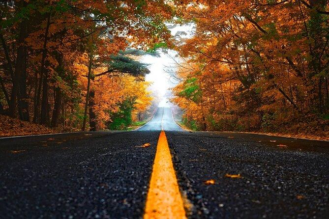 Listen to a Tour Guide as You Drive between Barrie & Muskoka