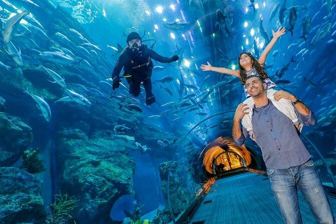 Dubai Aquarium & Underwater Zoo - Basic