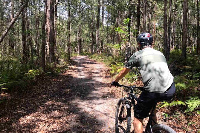 Small-Group Bike Ride in Sunshine Coast Forest