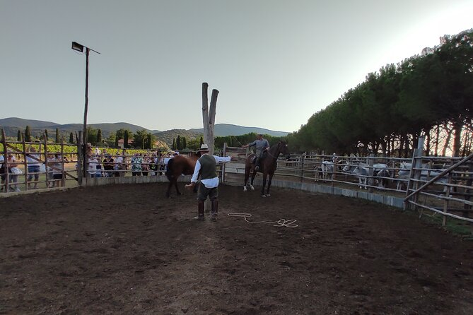 Show of Maremma Butteri with Dinner and Visit to the Bivouac