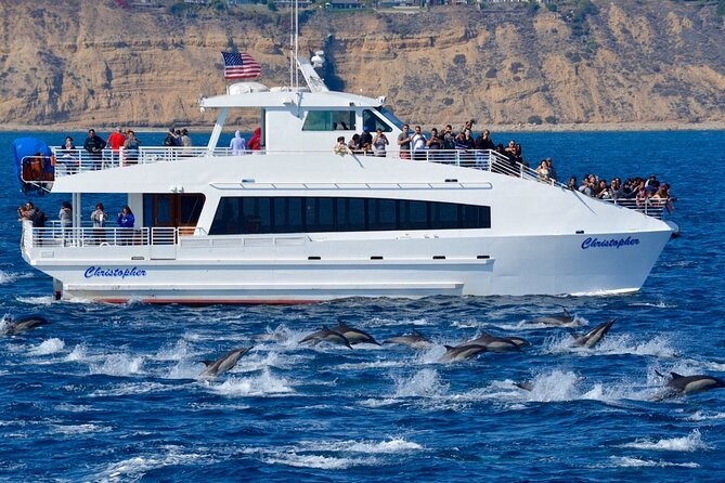 Guided Whale Watching Tour from Long Beach