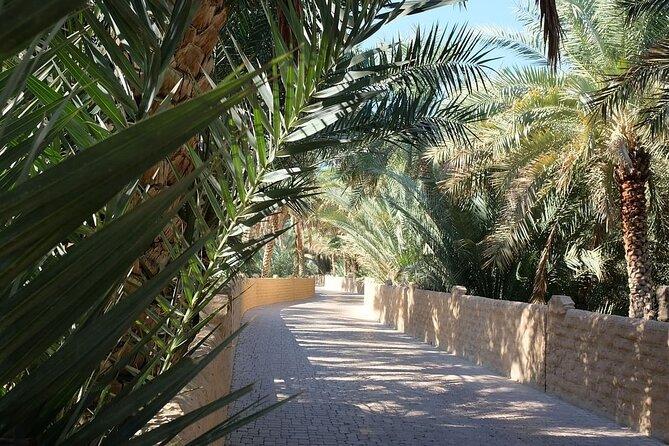 Semi-Private Full-Day Al Ain Cultural Tour from Dubai with Lunch