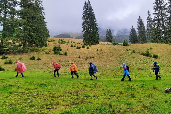 Pestera and Magura Full-Day Private Walking Tour from Brasov
