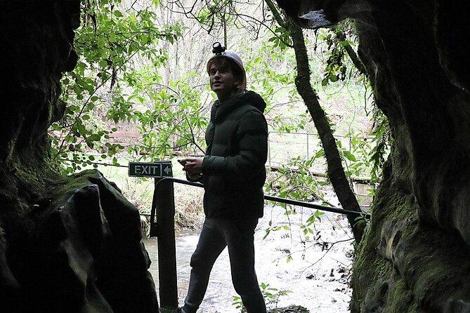 Hobbiton and Spellbound Tour (Glowworm Cave at Waitomo)