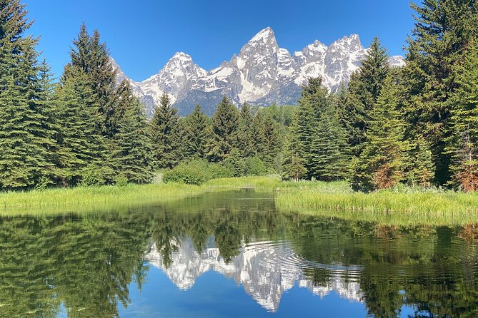 PRIVATE Grand Teton Magic- 4 Person or more, Full-Day, Picnic, Binos, Huge Van