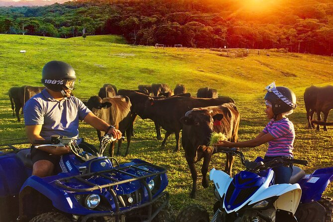 ATV Ride with Petting Zoo Experience in Kuranda from Cairns