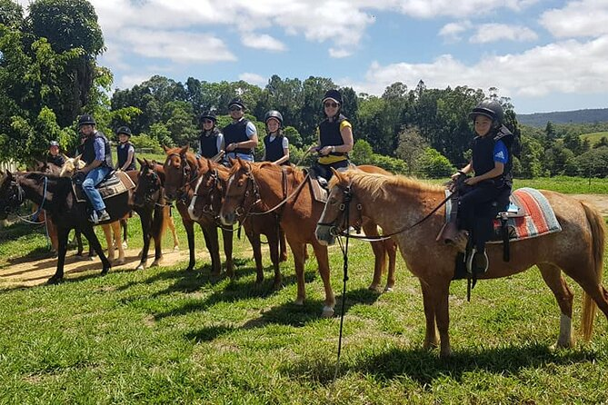 Horse Riding with Petting Zoo Visit in Cairns