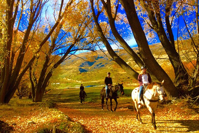 Small-Group Gold Discovery Horse Riding in Cardrona Valley
