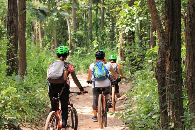 FIELDS OF GOLD Mountain Biking Tour Chiang Mai
