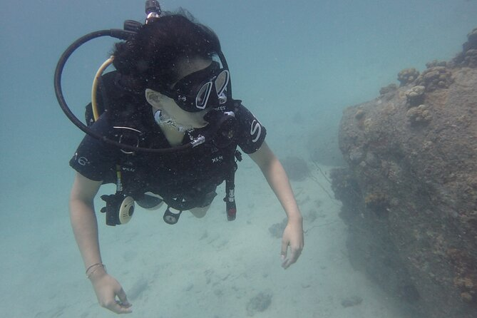 PADI Scuba Diver course for beginners Two days one night accommodation included