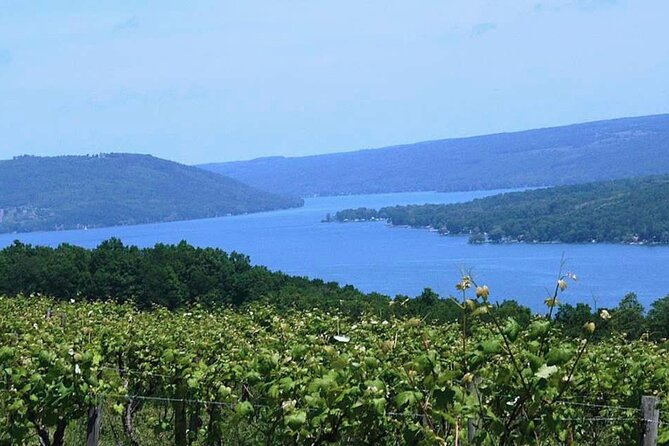 Keuka Lake Winery Tour