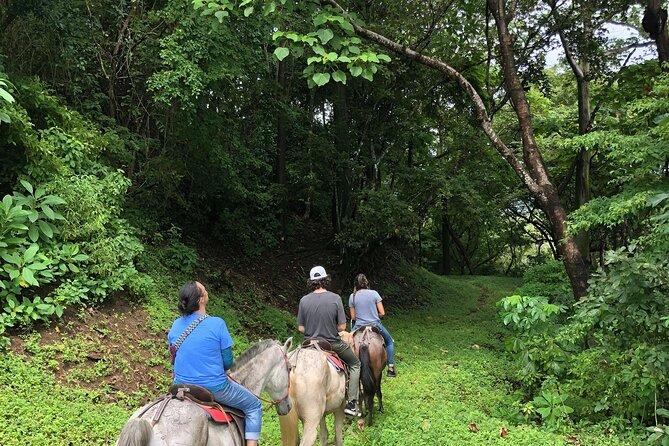 Jungle and Mountain Adventure