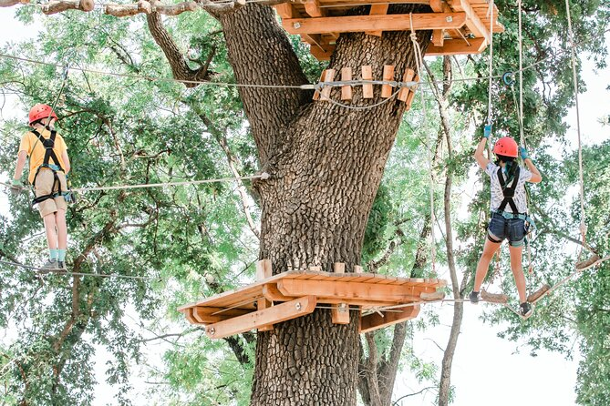 2-Hour Climbing and Ziplining in West Sacramento