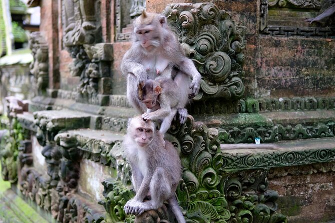 Private Tour: Ubud Highlights with Sacred Monkey Forest Sanctuary