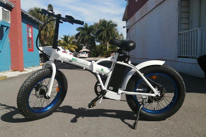Electric Fat Tire 2hrs
