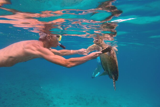 Private Full-Day Cruising and Snorkeling around Mahe