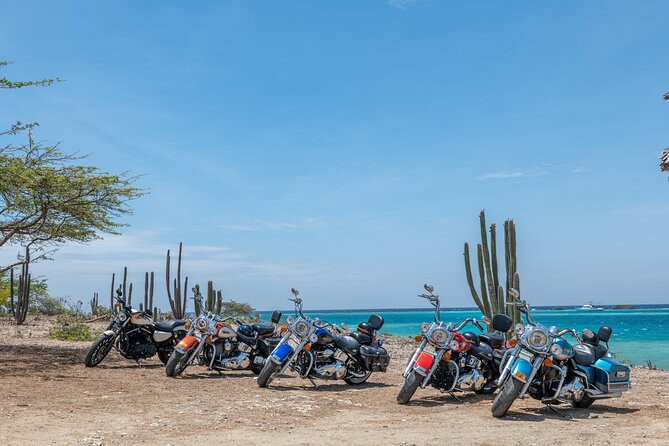 Harley-Davidson RENTALS ONLY 4 hrs