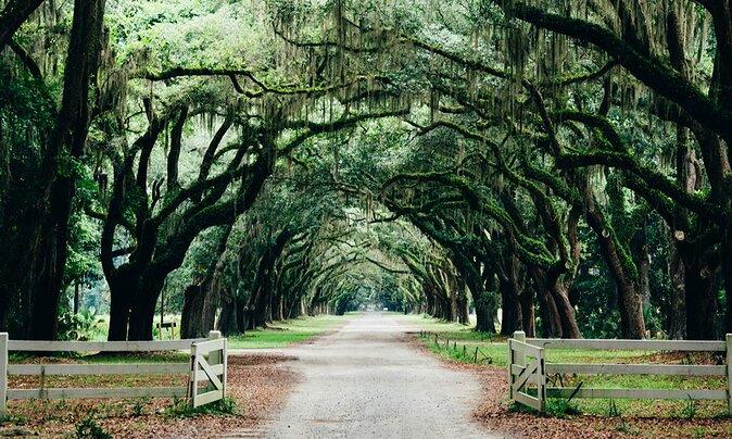 5 Best Weekend Getaways from Charleston
