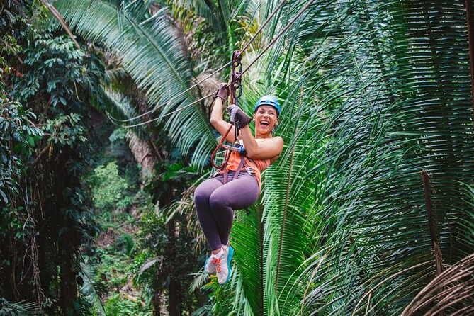 Zipline Adventure at Bocawina Rainforest