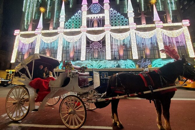 Private NYC Christmas Lights Horse Carriage Ride