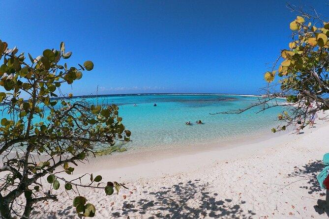 Private snorkel excursion to Baby Beach & Mangel Halto - Eco-friendly!