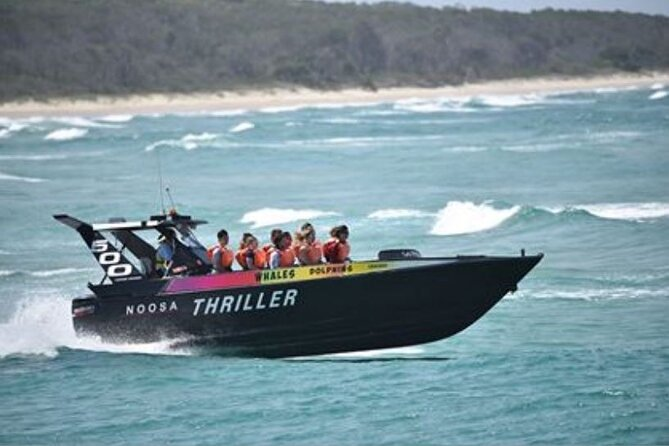 Noosa Thriller - 500hp Ocean Adventure Ride