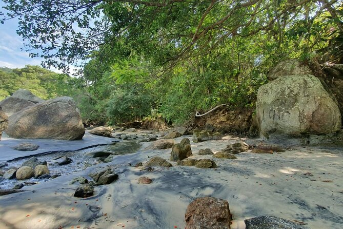 Ecological Trail and Crossings in Bombinhas by Zimbros Ecotour
