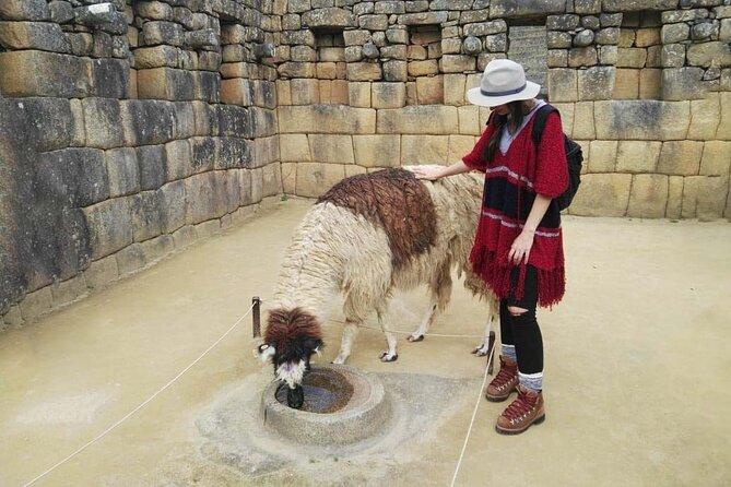 Full-Day Private Machu Picchu Guided Tour from Cusco
