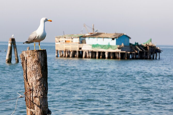 Lido, Pellestrina & Chioggia: bike hopping around the Venice lagoon islands