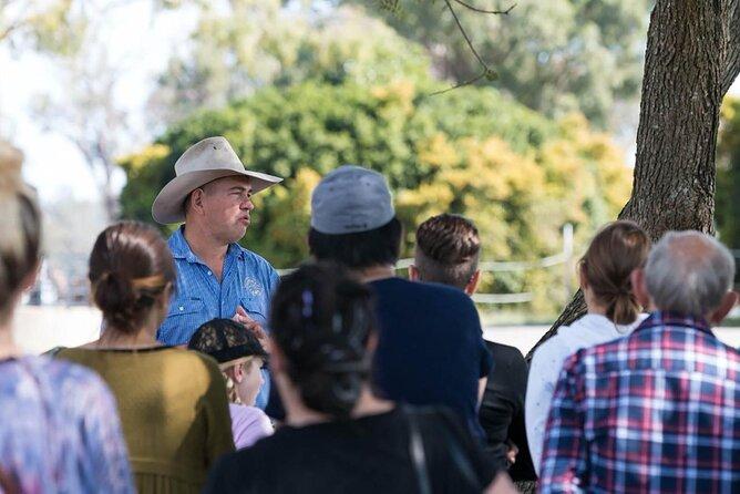 Camel Farm Tour and Taste near Brisbane