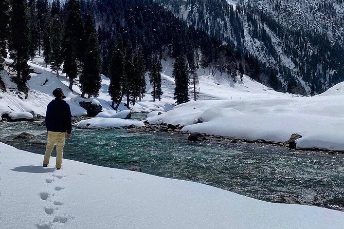 6-Day Kashmir Private Tour with Gulmarg Sonamarg and Pahalgam
