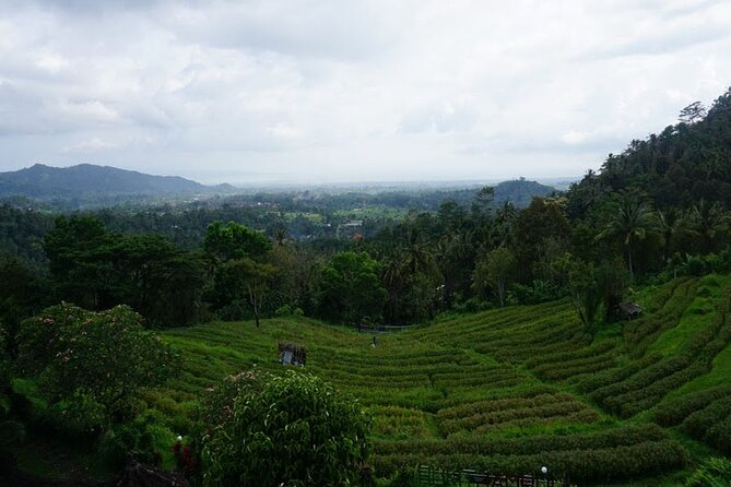 Soulful Trip to Besakih Temple and Amazing Places in Bali