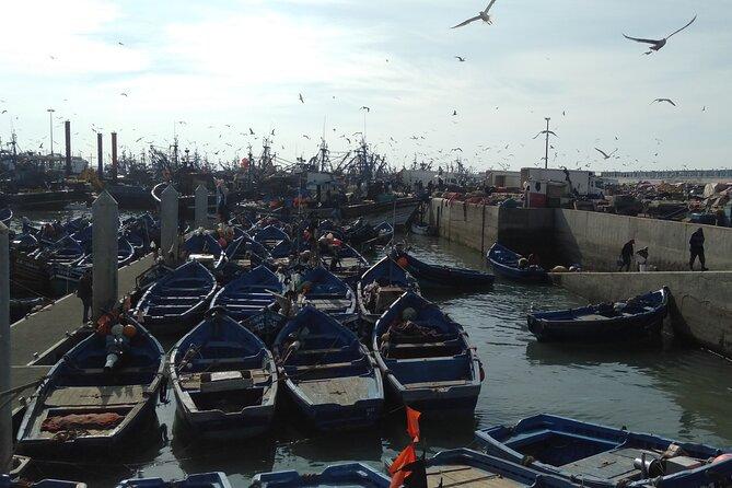 Full-Day Tour to Essaouira from Marrakech
