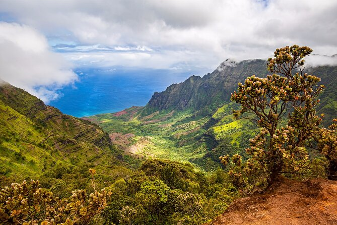 Private Waimea Canyon Tour with Local Guide