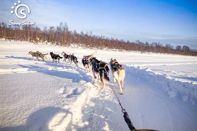 DATING SNOW & ICE - Snowshoeing, Santa Claus Village, Husky Ride & Snow Hotel Visiting