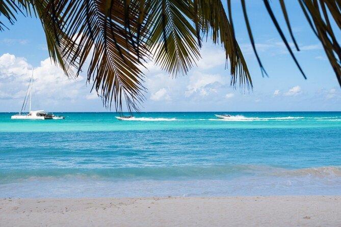 Saona Island Day Trip + Lobsters & Wine Included