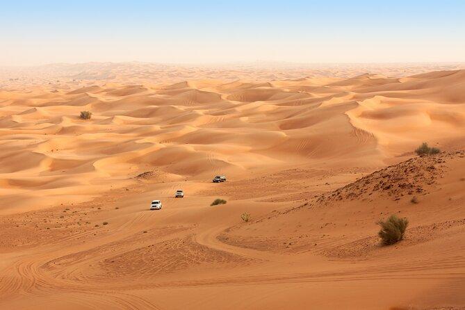 Morning Safari in Abu Dhabi