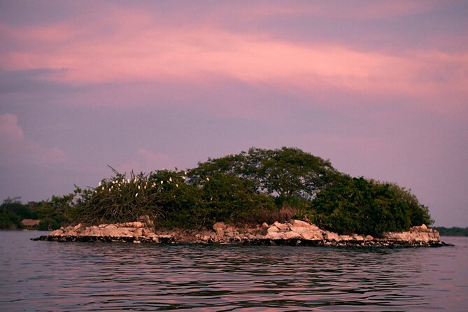 Bioluminescent Lagoon Boat Ride and Swim from Puerto Escondido