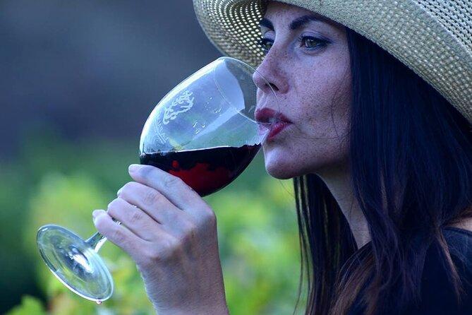 Visit Bodegas Teneguía winery in La Palma with wine Tasting