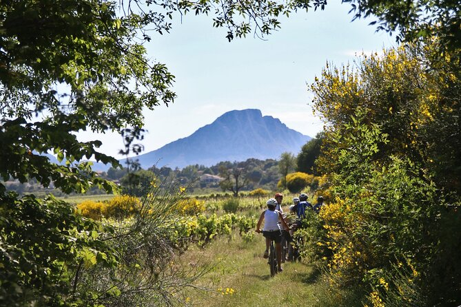 Guided Electric Bike Tours with Tasting in Pic Saint Loup